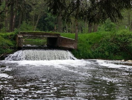 Kajaki lubuskie spływy