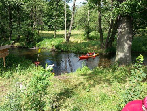 Spływy kajakowe Pliszka Ilanka